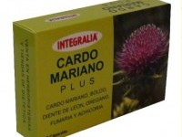 Cardo Mariano Plus de Integralia