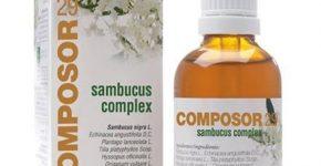 Composor 29 Sambucus Complex de Soria Natural aumenta la resistencia al frío