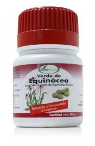 Verde de Echinacea