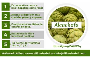 Infografía sobre la alcachofa y sus propiedades