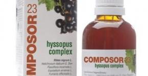 Composor 23 Hyssopus Complex
