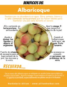 El albaricoque o la fruta de la eterna juventud