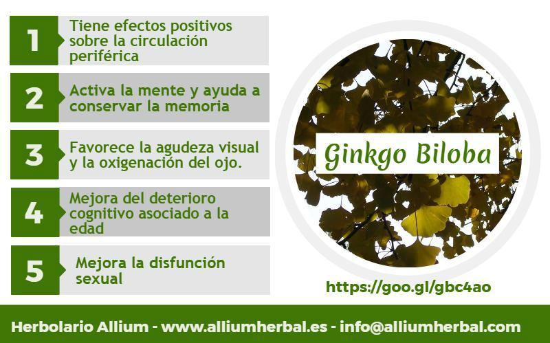 El ginkgo biloba mejora los trastornos circulatorios, activa la mente y ayuda a conservar la memoria. Tiene efectos positivos sobre las funciones cerebrales y circulación periférica.