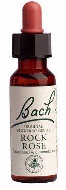 Nogal Flor de Bach 20 ml, para iniciar nuevas etapas