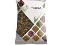 Frangula en planta de Soria Natural. Contribuye a regular el tránsito intestinal