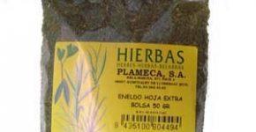 Eneldo, planta aromática en la cocina y tiene aplicaciones terapéuticas