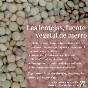 Lentejas, fuente vegetal de selenio