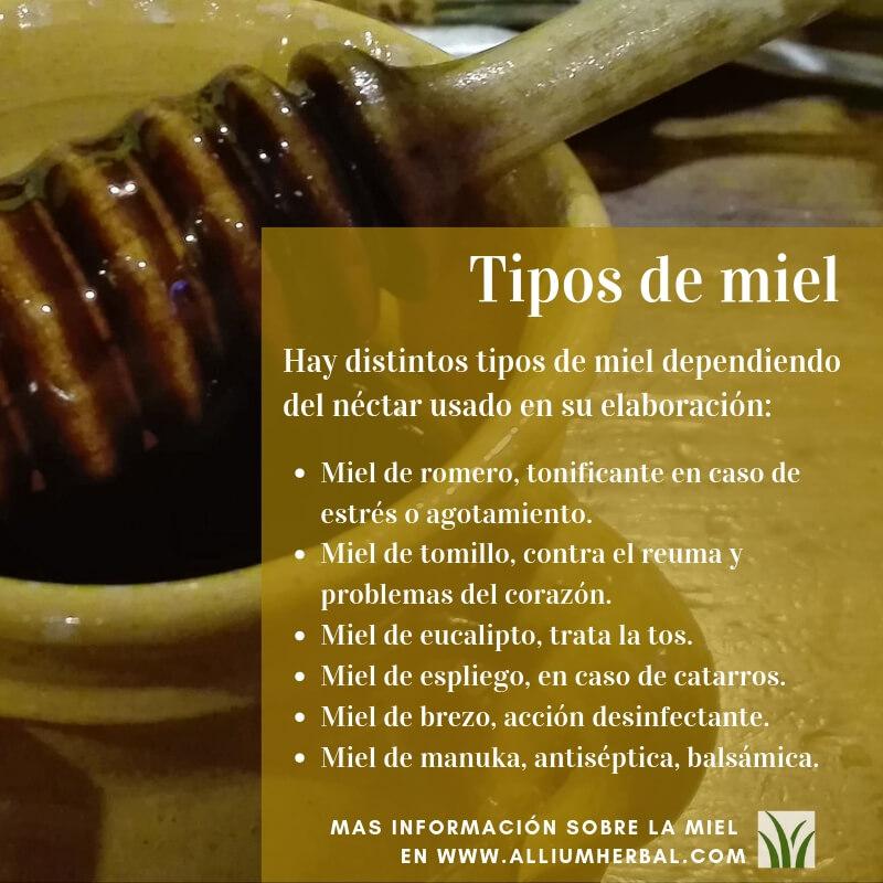 Tipos de miel, propiedades de la miel