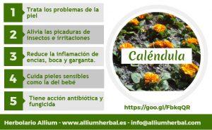 Infografía sobre las propiedades de la Caléndula