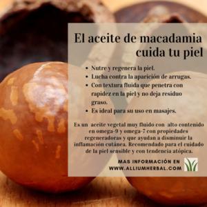 Propiedades de la macadamia