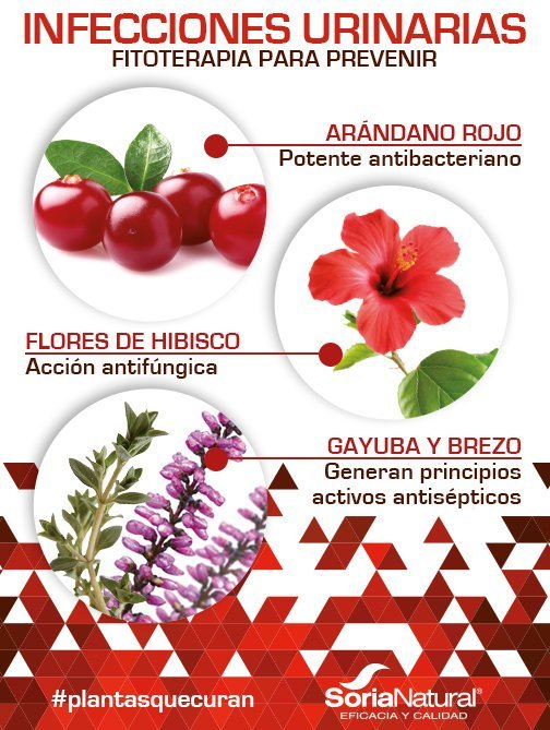 1-C Diuracil 60 cápsulas 400 mg de Soria Natural