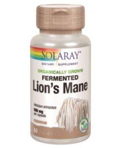 Melena de león de Solaray, mejora el sistema nervioso